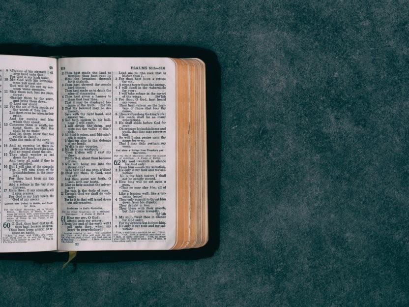 Bibellæseplan uge 45
